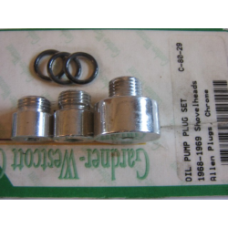 oil pump plug set.
